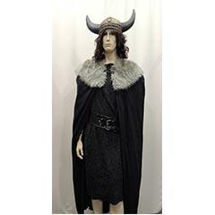 Antiquités-viking