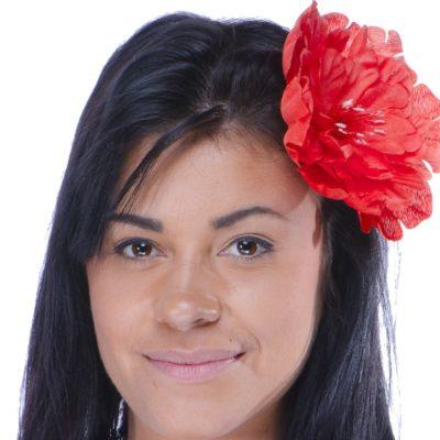 barette-hawai