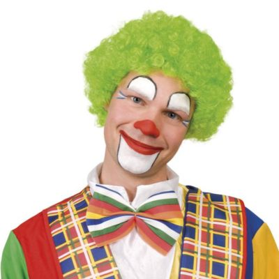 perruque-clown-verte