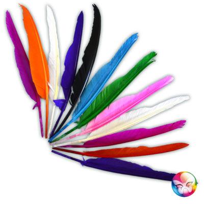 sachet-12-plumes