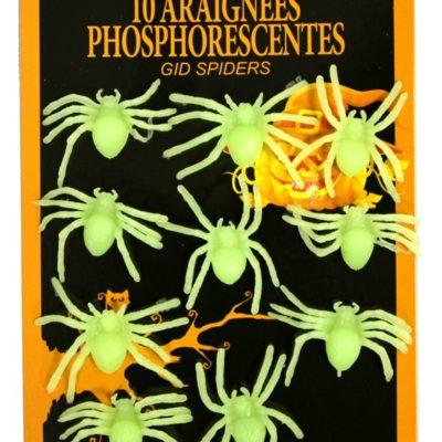 araignees-phosphorescentes