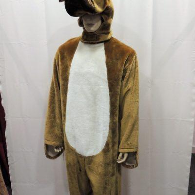 déguisement-grand-chien-saint-maur