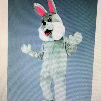 mascotte-lapin-gris
